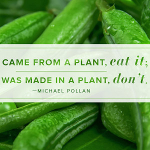 Michael-Pollan-Quote-About-Eating.jpg