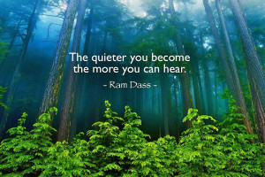 the-quieter-you become