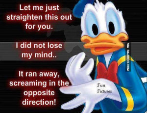funny donald duck pictures 19