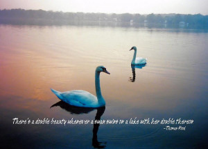 Pretty Bird Quote Photograph