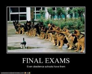 Final Exams Meme
