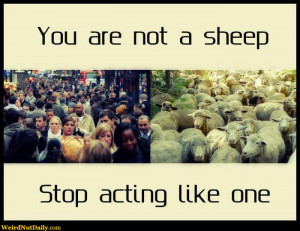 ... people and a herd of sheep: You are not a sheep, stop acting like one