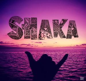 surfahboi: The Origins of Shaka