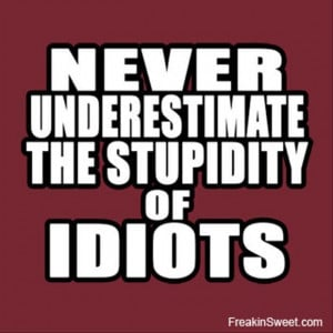 never underestimate the power of stupid people