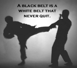 ... quote i ve been writing blogs about martial arts for about 4 months