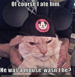 Mickey Ears Happycat