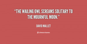 """The wailing owl Screams solitary to the mournful moon."""""""