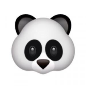 Panda Quotes™