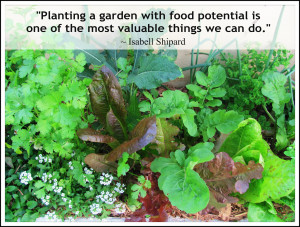 Planting a garden with food potential is one of the most valuable ...