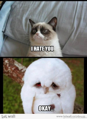 Grumpy Cat Vs. Sad Owl