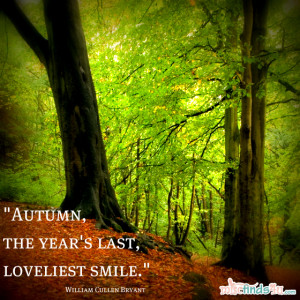 Quotes: Reflections on the Season of Fall
