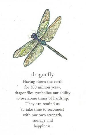 Symbolism - dragonfly