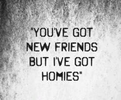 you've got new friends,,but i've got homies'