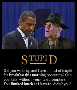 Are Too Stupid To Understand My Jobs Plan just heard that Obama