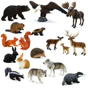 Forest Animal Pictures Animal Pictures for Kids with Captions to Color ...