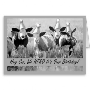Birthday Cousin Funny Cows Cards