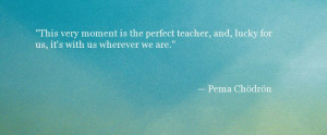 Pema Chodron Quote - Perfect Teacher - Oprah.com