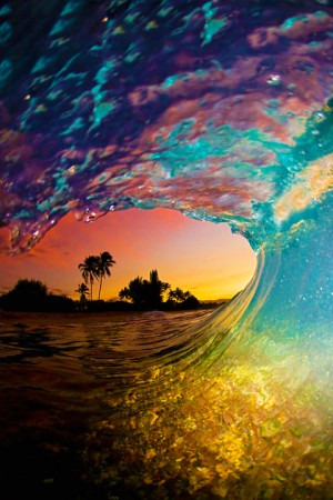 summer surf water beach ocean sea wave sunset surfing palm tree ...