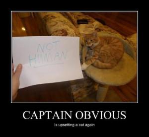 Captain obvious (19 paveiksliukų)