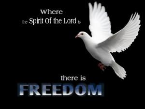 Christian Quote: Freedom Papel de Parede Imagem