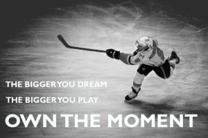 at sono ice house we feature hockey programs for all ages at sono ice ...