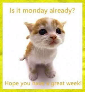 Good Morning Monday...