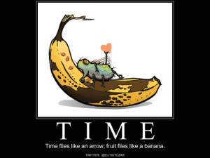 hehe, Time flies like an arrow; fruit flies like a banana. #funny