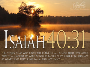 But they that wait upon the LORD shall renew their strength; they ...
