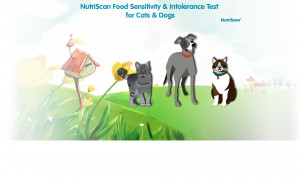 ... to decide if NutriScan is the right test for their companion animals