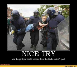 funny pictures,auto,police,woman,demotivation,kitchen,sexism