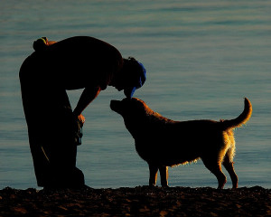 What if I loved him like his dog did? What if I could fill that void ...