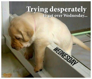 Trying to get over Wednesday
