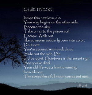 Quotes for your Meditation