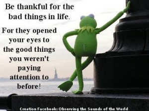 does Kermit actually have deep, thoughtful quotes like this? if so i'm ...