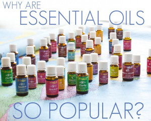 Why are essential oils so popular today? Come find out all the ...