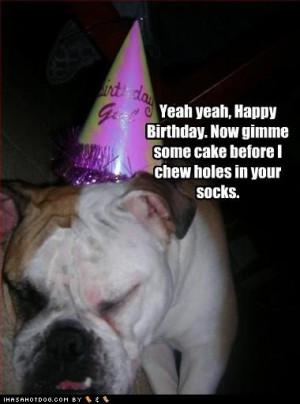 funny happy birthday quotes. funny happy birthday quotes