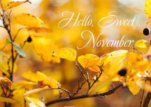 Hello Sweet NovemberAstonishing Autumn, Hello Fall, Hello Sweets ...
