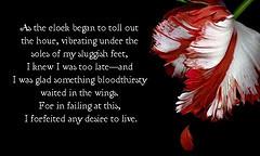 werewolf love quotes