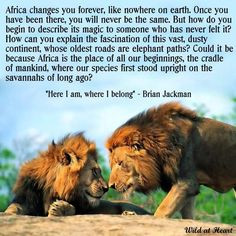 Africa quote. Don't understand the second part of the big paragraph ...