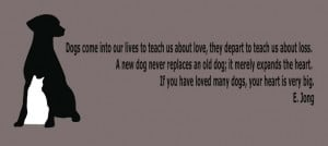 Veterinarian Quotes Sayings