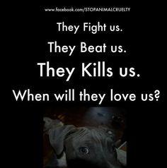 Animal Rights Photo: Stop animal abuse!!!