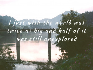 Cute travel quotes to fuel your wanderlust | Lace n Ruffles