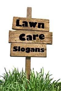 funny lawn care slogans