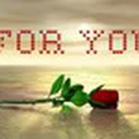 friendship quotes red rose photo: FRIENDSHIP 16.jpg