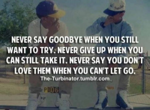... Never Say You Don't Love Them When You Can't Let Go ~ Goodbye