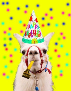 Happy Birthday to My Wonderful Llama Mama