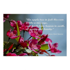 Apple Blossom Poster With Quote