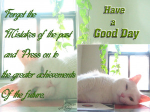 Forget The Mistakes Of the Past, Have A Good Day