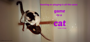 Cat and Mouse Quotes