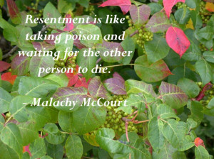 ... 20 12 2012 by quotes pics in 819x614 malachy mccourt quotes pictures